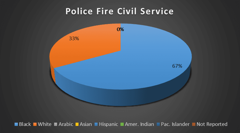 Police Fire Civil Service Ethnicity Breakdown