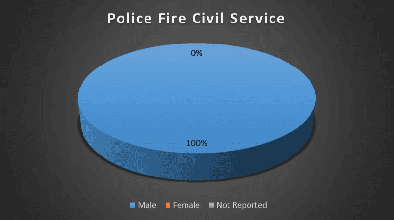 Police Fire Civil Service Gender Breakdown