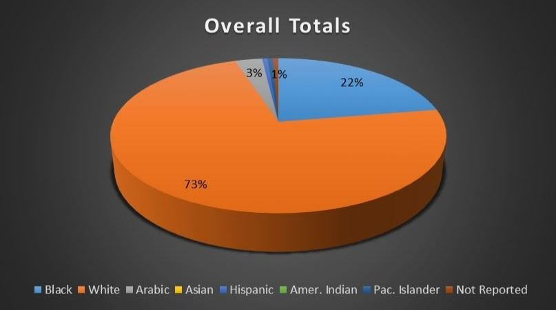 Overall Board Ethnicity Breakdown